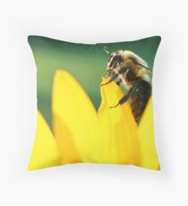 On Top of the World!! Throw Pillow