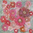 Flower Power by Julie  Sutherland