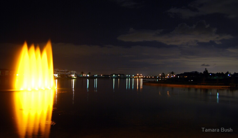 Pakenham Lakeside by night by Tamara Bush