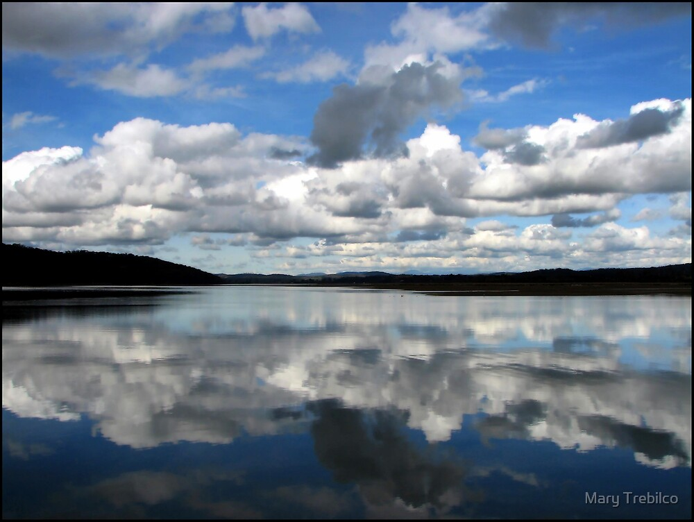 It's clouds illusions I recall... by Mary Trebilco