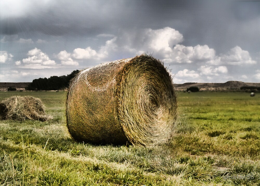 Hay droppings by windrider86
