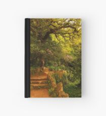 looking for the fountain of love... Hardcover Journal