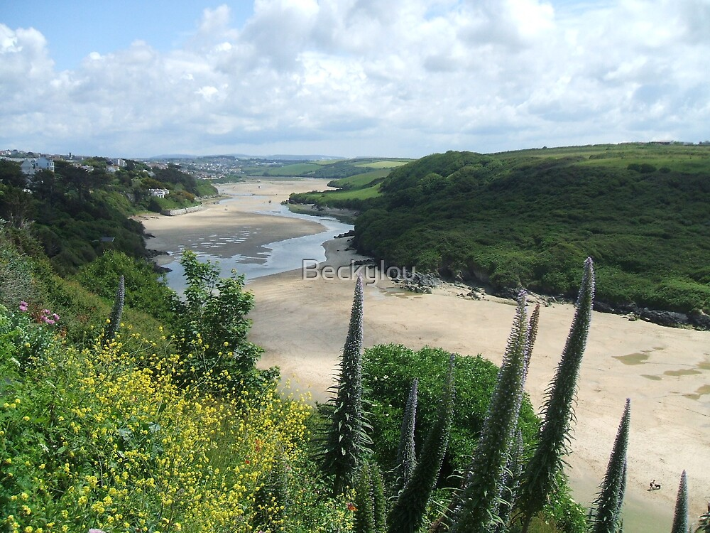 View of Newquay Gannel from Fern Pit by Beckylou