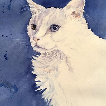 Sophie...A Bowie of a cat by Hillybobs
