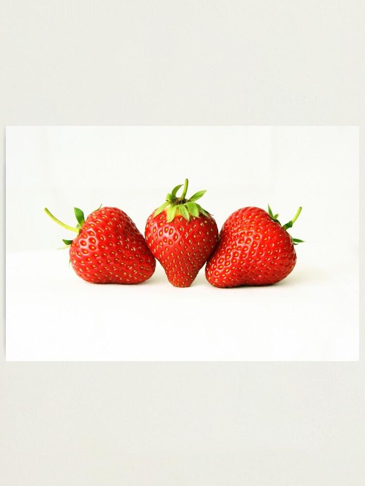Alternate view of Three Strawberries On White Photographic Print