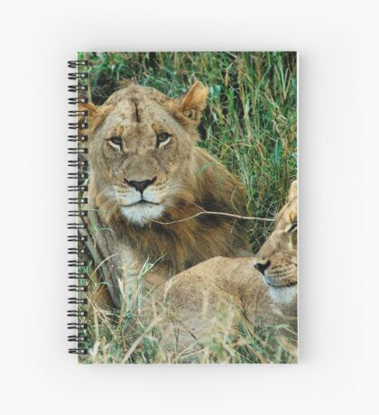 THE COUPLE - THE LION – Panthera leo Spiral Notebook
