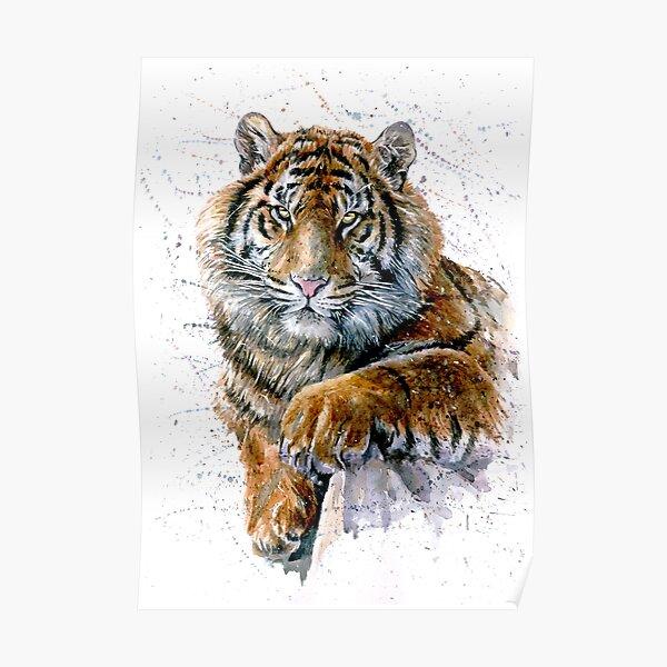 Tiger watercolor predator Poster