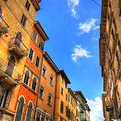 Verona by Paul Tait