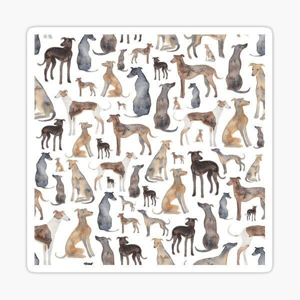 Greyhounds, Wippets and Lurcher Dogs! Sticker