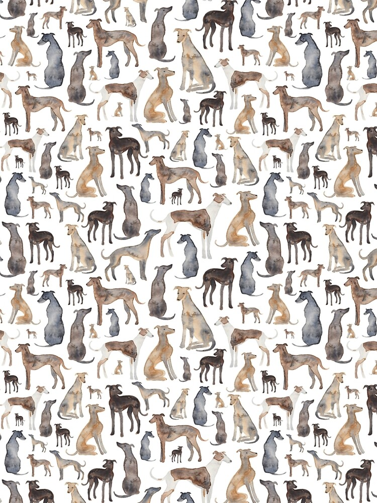 Greyhounds, Wippets and Lurcher Dogs! by ElenaONeill
