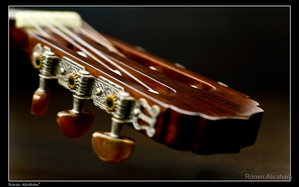 Play With My Guitar 5 by Ronen Abraham