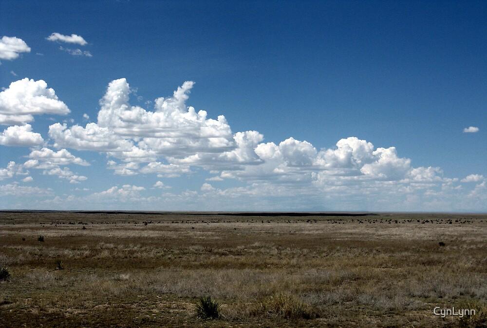 Comanche Ntl. Grasslands, Colorado by CynLynn