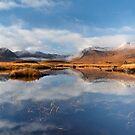 Blackmount in Autumn. Rannoch Moor. Highland Scotland. by PhotosEcosse