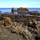 rocky shoreline by SNAPPYDAVE