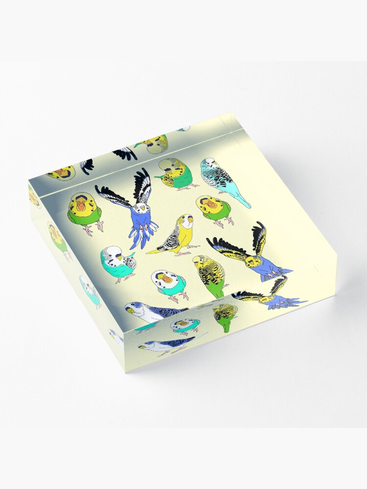 Alternate view of budgie doodle pattern Acrylic Block