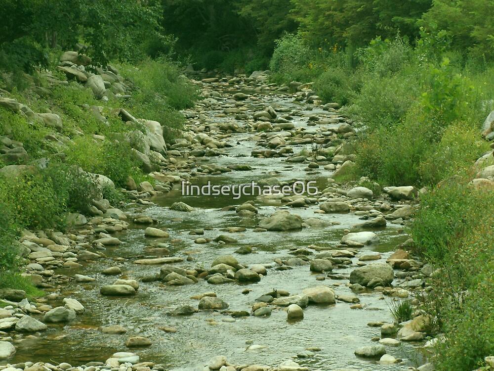Winding creek by lindseychase06
