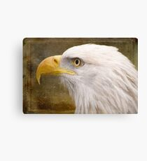 Strength and Beauty - Nature Art Canvas Print