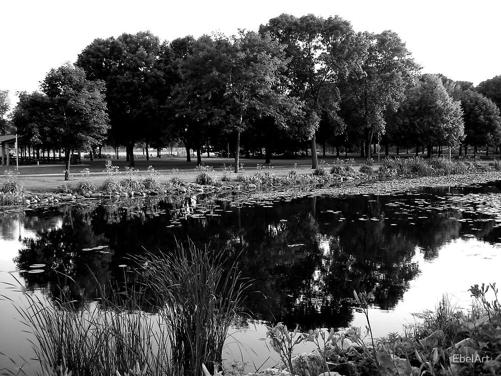Reflecting by EbelArt