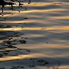 Abstract Water Reflections by lindsycarranza