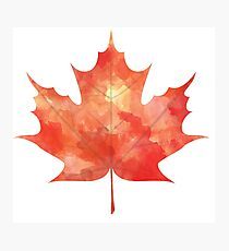 Watercolor Maple Leaf Photographic Print