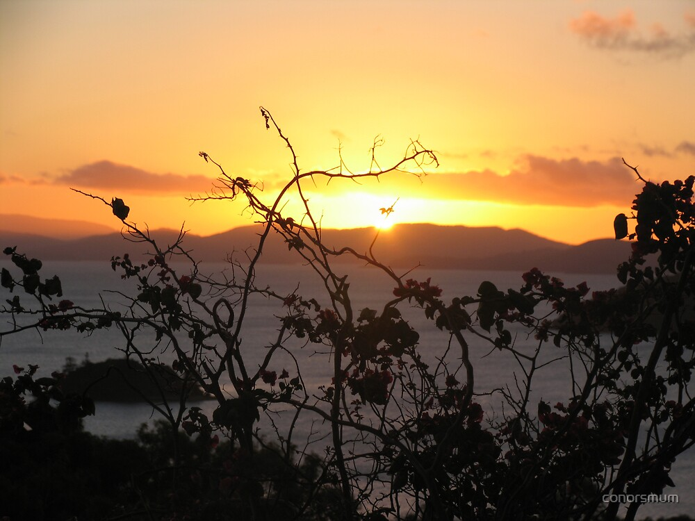 sunset Hamilton Island by conorsmum