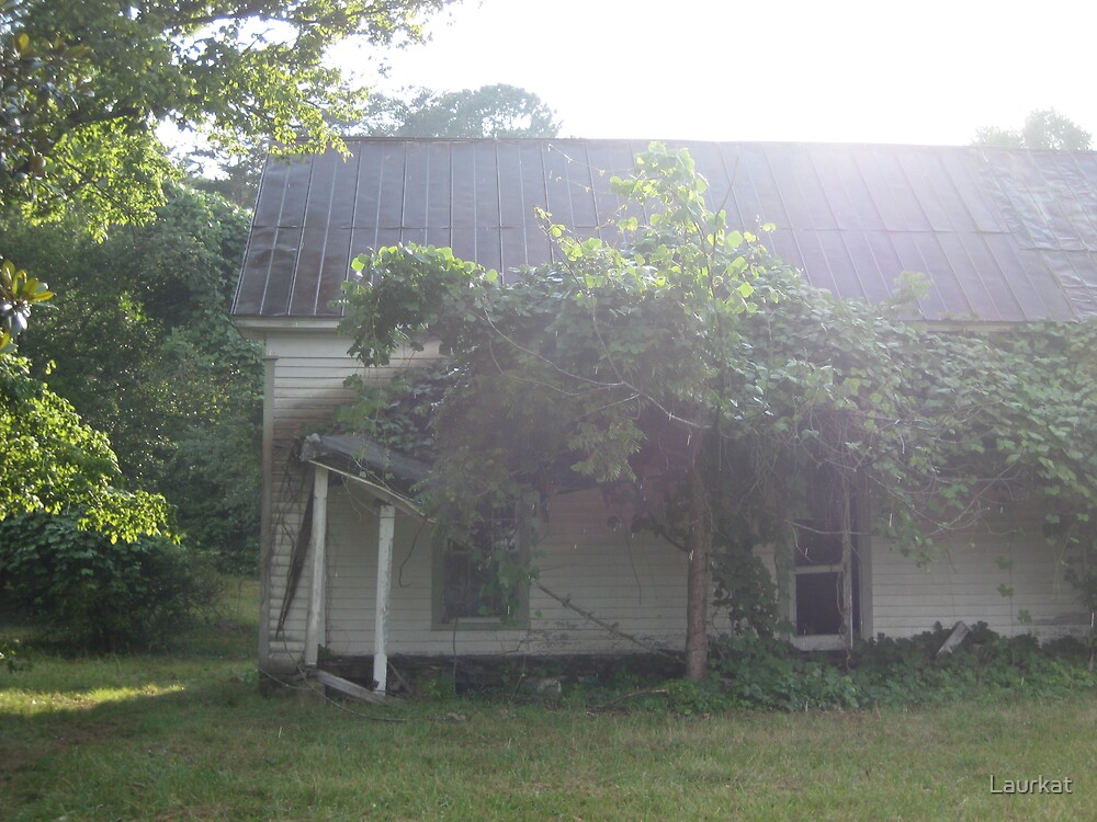 old Sautee Valley farmhouse  by Laurkat