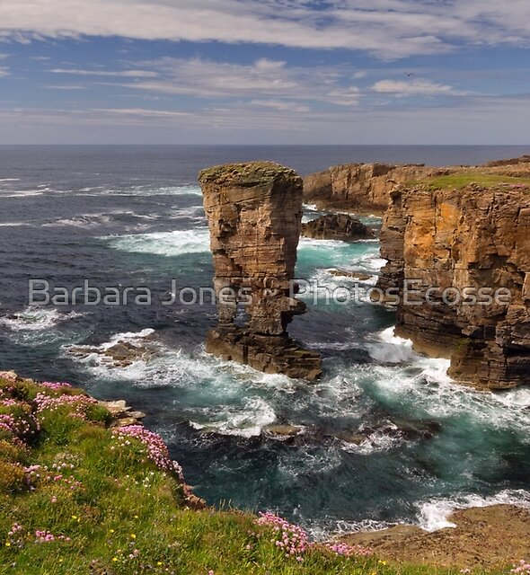 Yesnaby Castle Sea Stack. West Mainland Orkney. Scotland. by Barbara  Jones ~ PhotosEcosse