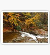 Laurel Creek Cascades II Sticker