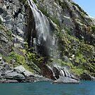 Alaskan Shower by Gary L   Suddath