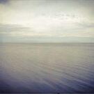 Clear Lake by Barbara Wyeth