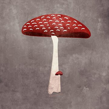 Magic Mushroom #HippyLoveStuff (Amanita mascara) by nealcampbell