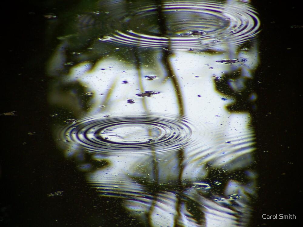 Ripples by Carol Smith