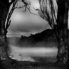 Waikato by Shannan Edwards