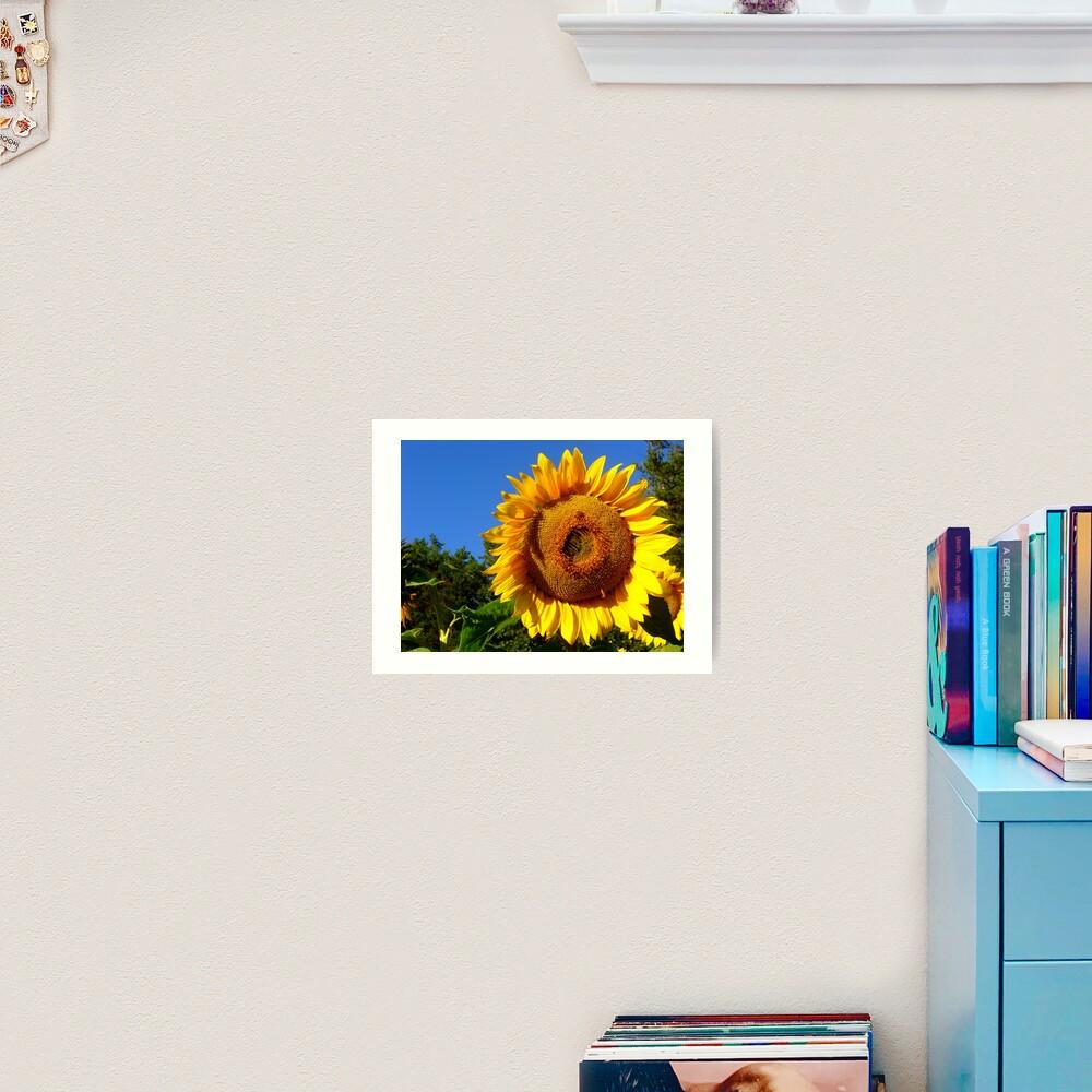 Keep Your Face to the Sun Art Print