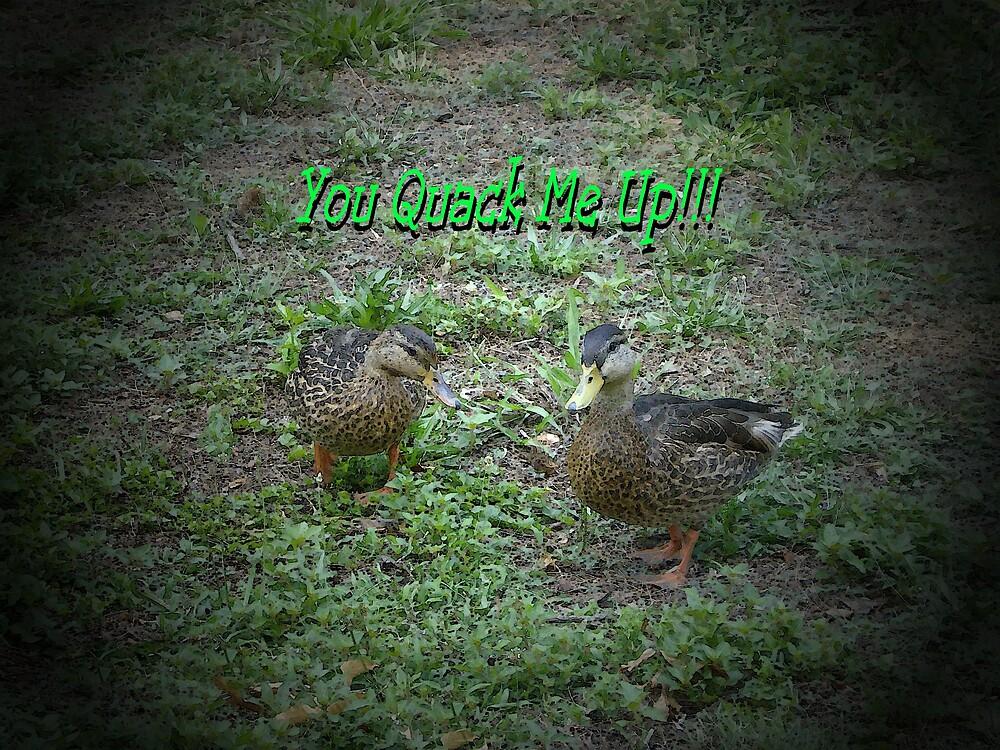 You Quack Me Up!!! by loramae