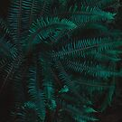 Blue Fern Twilight by Leah Flores
