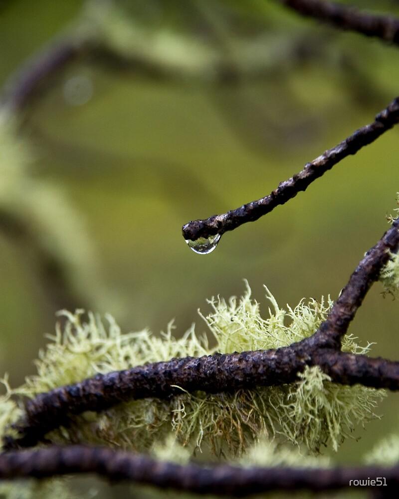 The last rain drop by rowie51