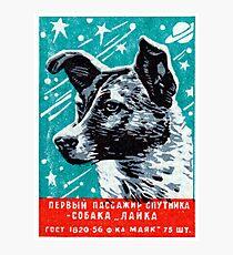 1957 Laika der Space Dog Fotodruck