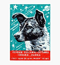 1957 Laika der Space Dog Fotodruck