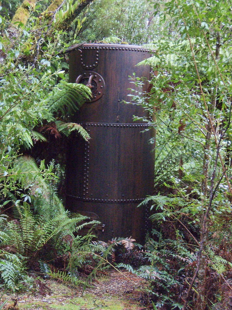 old boiler in Rosebery bush by gaylene