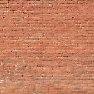 Red Brick Wall by Bo Insogna
