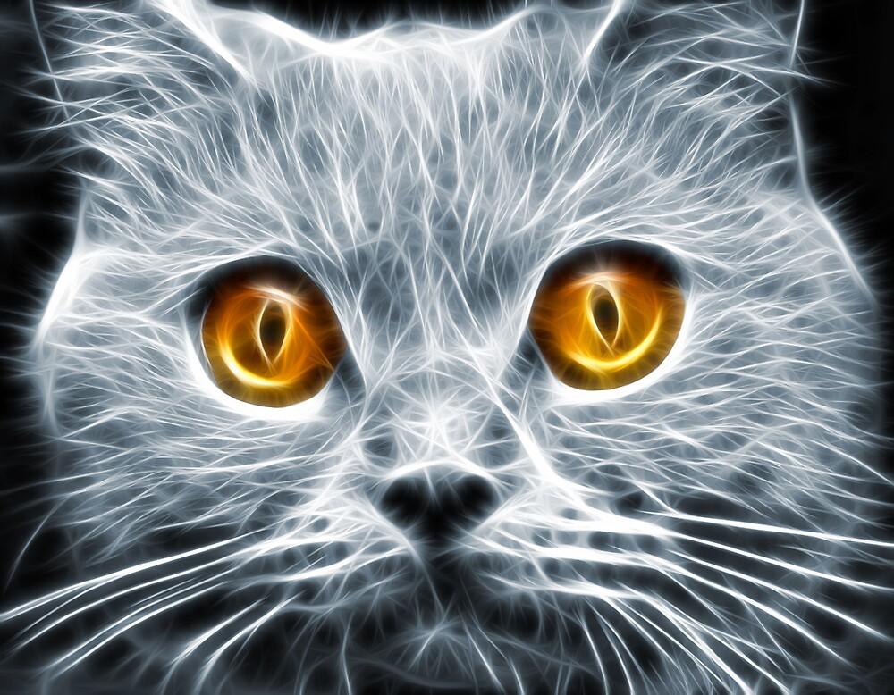 Demon Eyes by Mikhail Palinchak