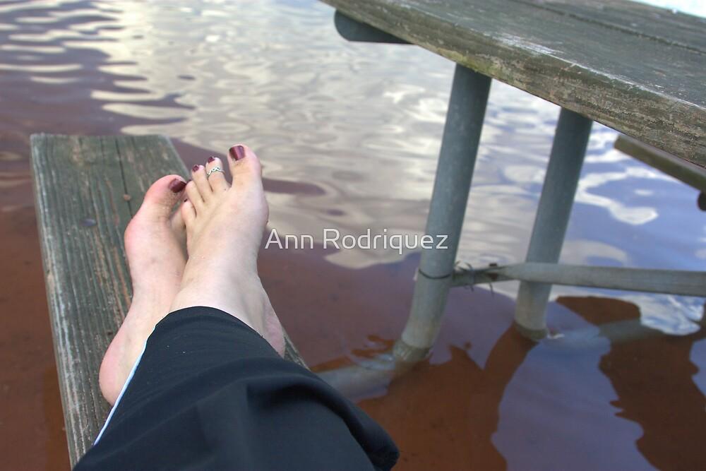 Submerged by Ann Rodriquez