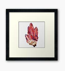 blood red crystal variant Framed Print