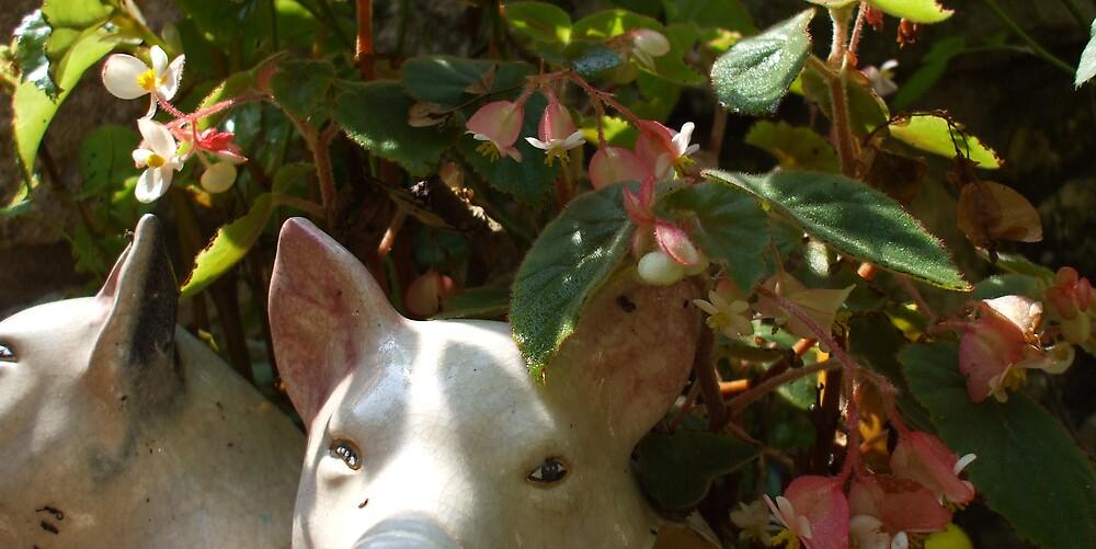 Pink Peek-a -Boo Piggy by Dalzenia Sams