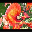 poppy dream by budrfli