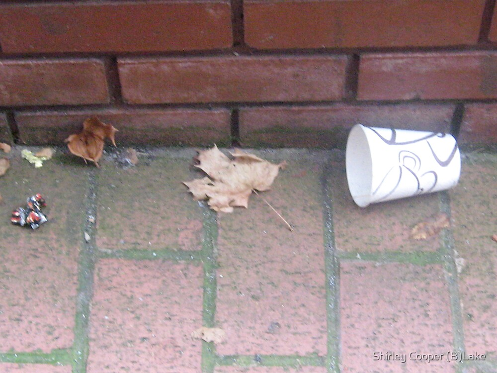 Leaves and Cup by Shirley Cooper (B)Lake