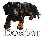 Dexter Boy by Tom Godfrey