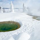 Steam and Snow by Gary Lengyel