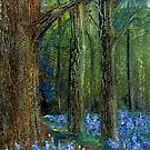 Bluebell Time by Carol Rowland